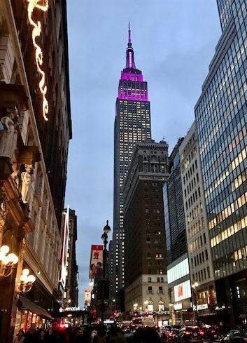 """ניו יורק האחת והיחידה"""": יכלול את *האמפייר סטייט בילדינג, (לא תמיד ניתן לעלות למעלה), טיימס סקוויר, רוקפלר סנטר, השדרה החמישית, הסנטרל פארק."""